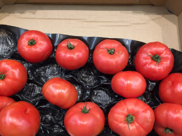 Photograph of multiple beef tomatoes in black plasting casing in a wooden crate..